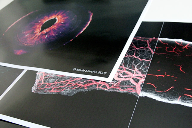 Posters 40x60cm - Paris Eye Imaging